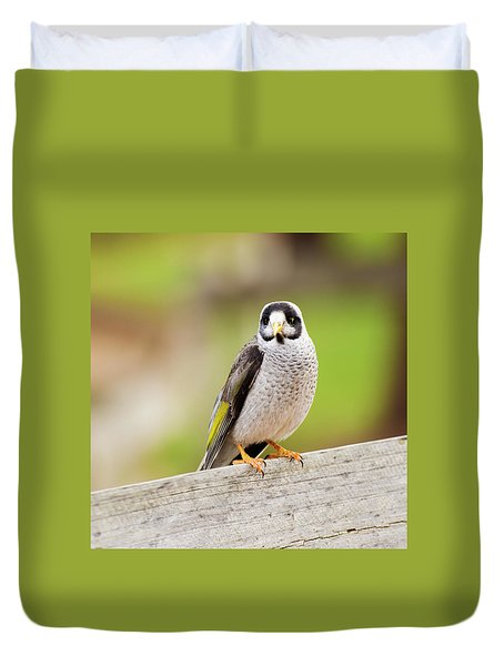 Duvet Cover featuring the photograph Noisy Miner Bird By Itself by Rob D