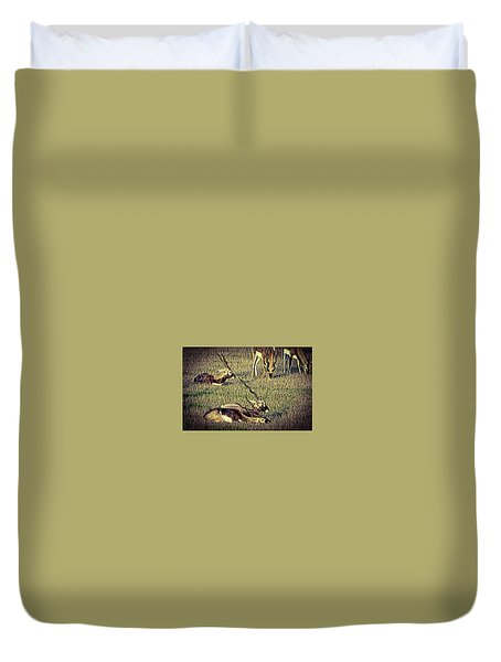 Animal Duvet Cover