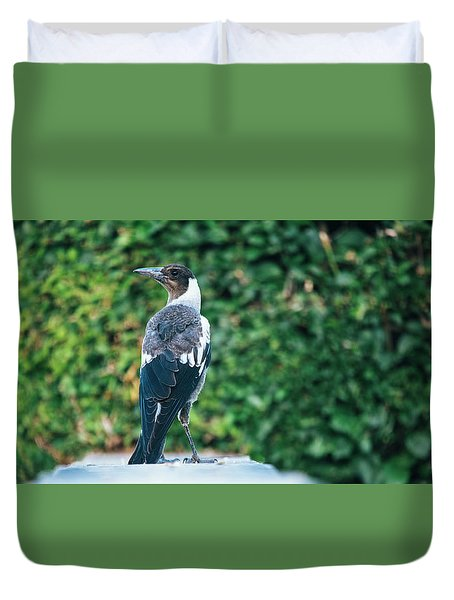 Duvet Cover featuring the photograph Australian Magpie Outdoors by Rob D