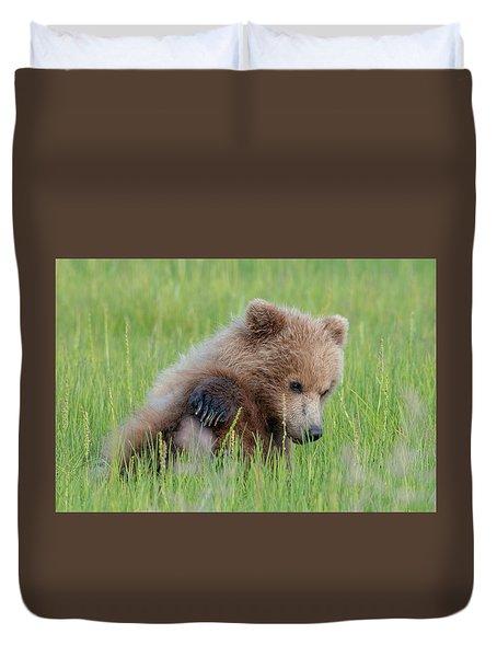 A Coy Cub Duvet Cover