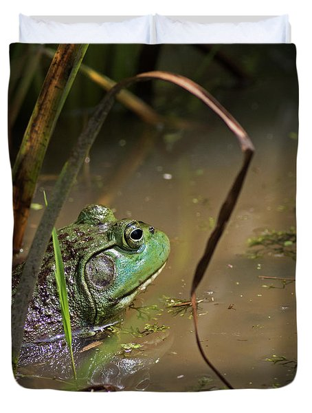 A Frog Waits Duvet Cover