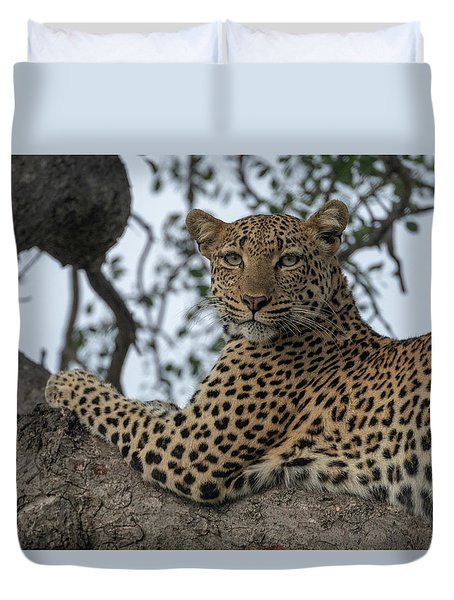 A Leopard Gazes From A Tree Duvet Cover