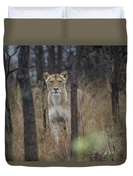 A Lioness In The Trees Duvet Cover