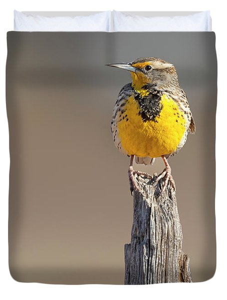 A Meadowlark Sits On A Fence Post Duvet Cover