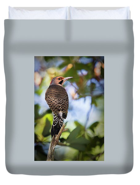 A Northern Flicker Duvet Cover