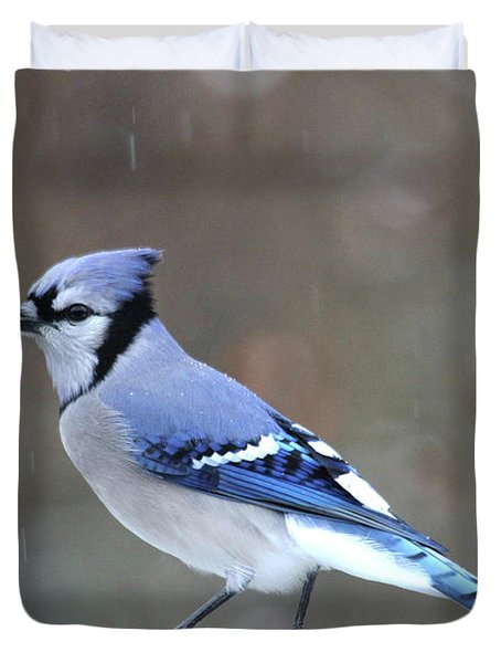 A Snowy Day With Blue Jay Duvet Cover