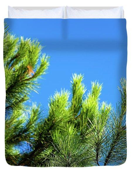 Adriatic Pine Against Blue Sky  Duvet Cover