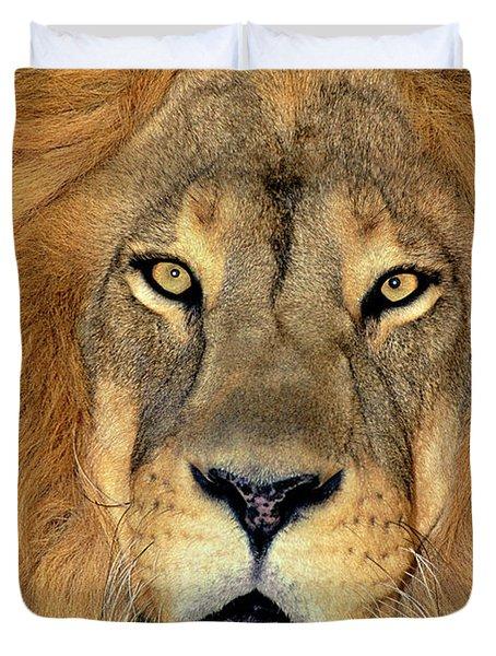African Lion Portrait Wildlife Rescue Duvet Cover
