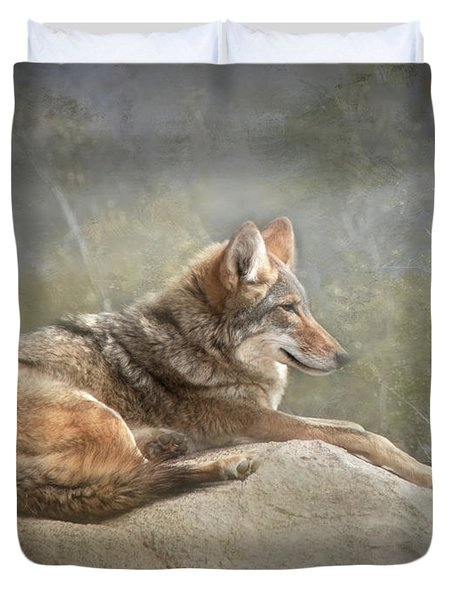 Afternoon Repose Duvet Cover