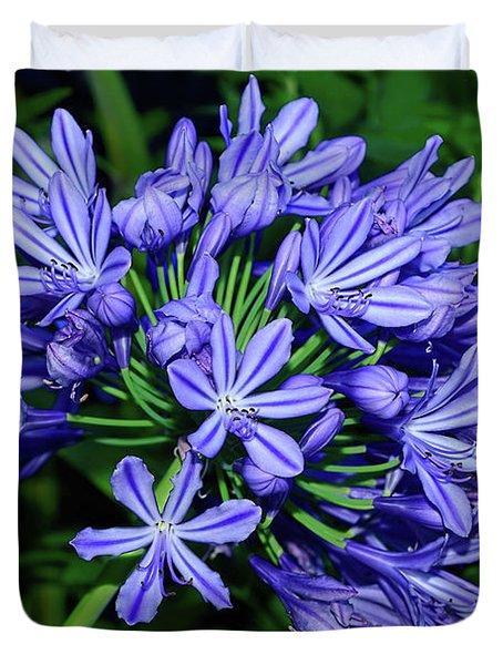 Agapantha Blooming By Kaye Menner Duvet Cover
