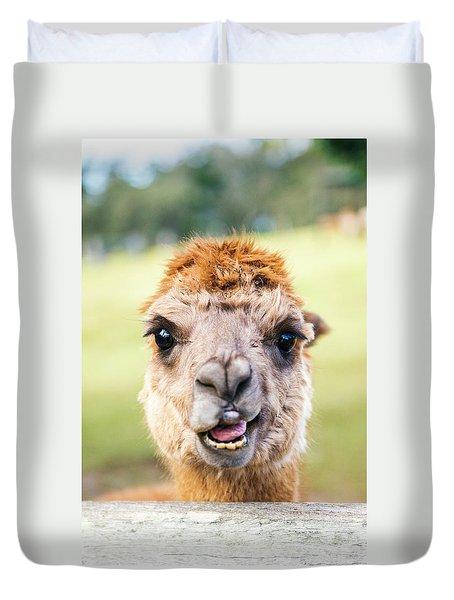 Alpaca Duvet Cover