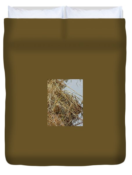 Duvet Cover featuring the photograph American Bittern by Debbie Stahre