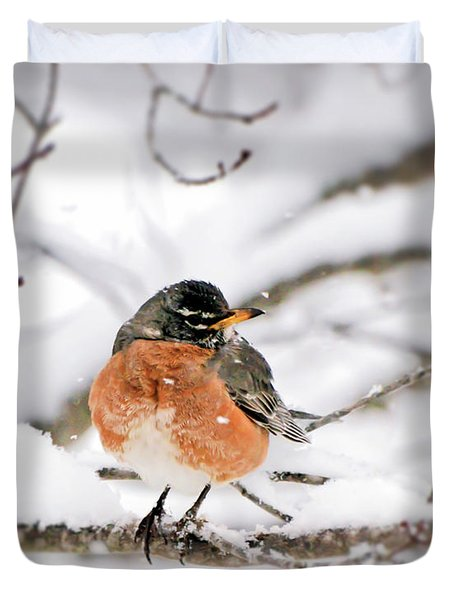 American Robin In The Snow Duvet Cover