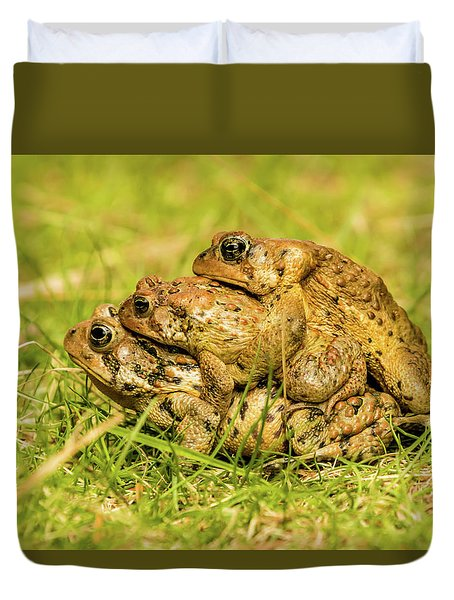 American Toad Western Brooke Pond, Grose M Duvet Cover