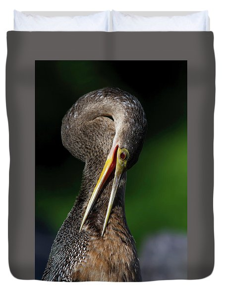 Anhinga Combing Feathers Duvet Cover
