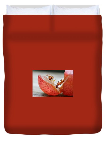 Duvet Cover featuring the photograph Ants by Candice Trimble