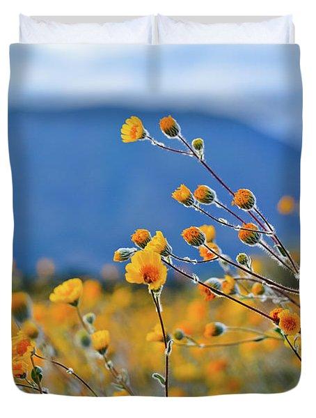 Anza Borrego Wild Desert Sunflowers Duvet Cover