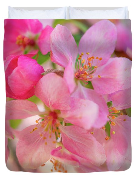 Apple Blossom 12 Duvet Cover