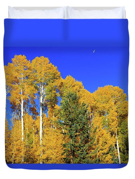 Arizona Aspens And Blowing Leaves Duvet Cover
