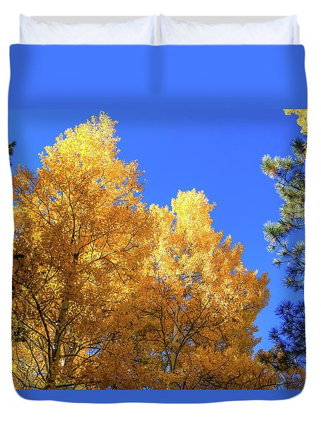 Arizona Aspens In Fall 2 Duvet Cover