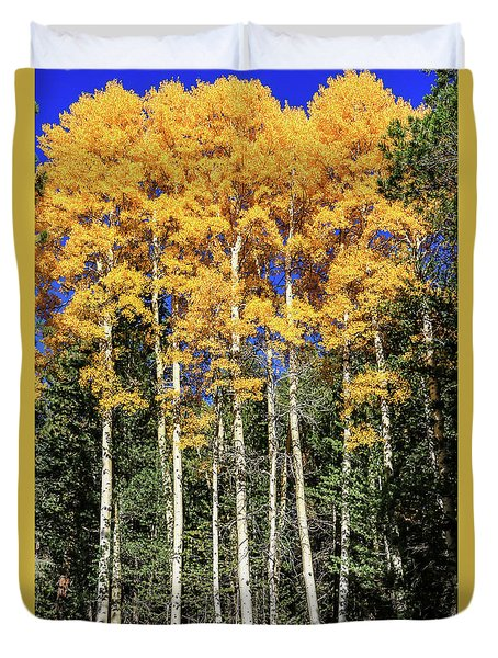 Arizona Aspens In Fall 3 Duvet Cover