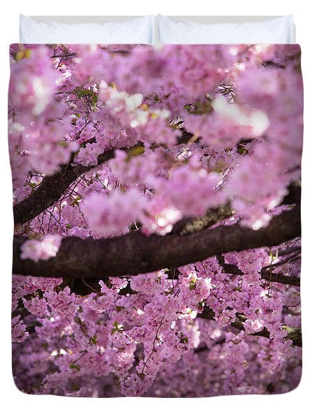 Cherry Blossom Tree Panorama Duvet Cover
