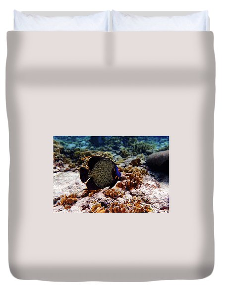 Duvet Cover featuring the photograph Aruban French Angelfish by Lars Lentz