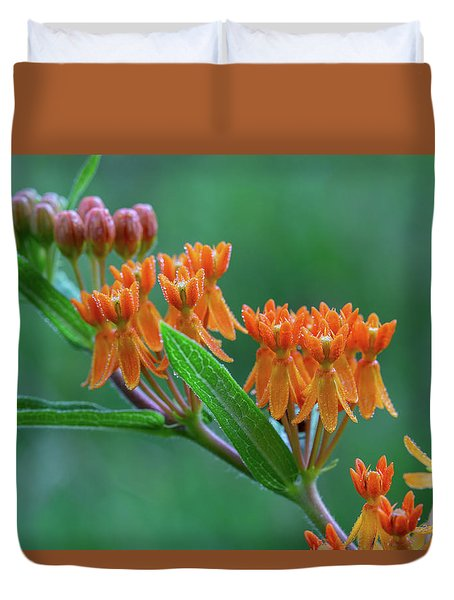 Duvet Cover featuring the photograph Asclepias Tuberosa by Dale Kincaid