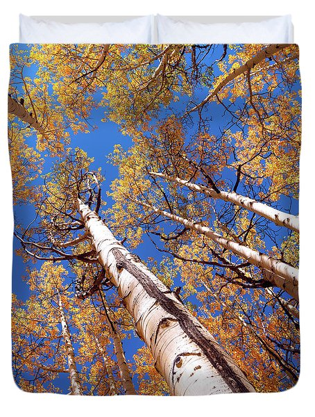 Duvet Cover featuring the pyrography Aspen Trees Against The Sky In Crested Butte, Colorado.   by OLena Art Brand