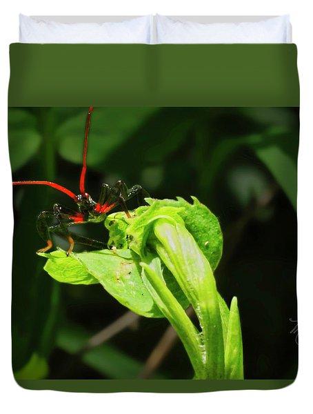 Assassin Bug Duvet Cover