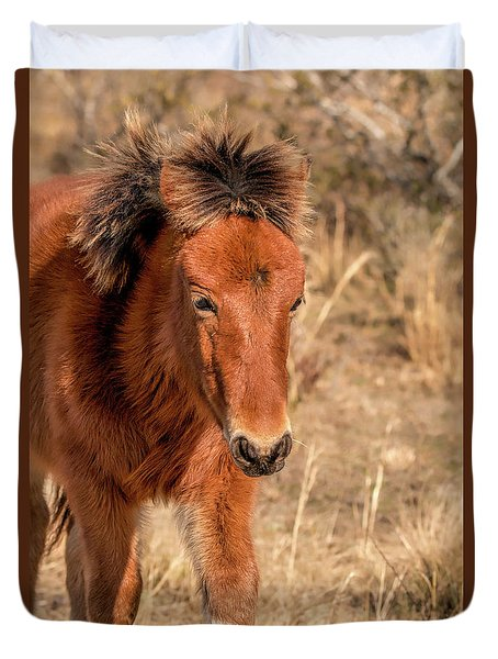 Duvet Cover featuring the photograph Assateague Island Pony Foal by Kristia Adams