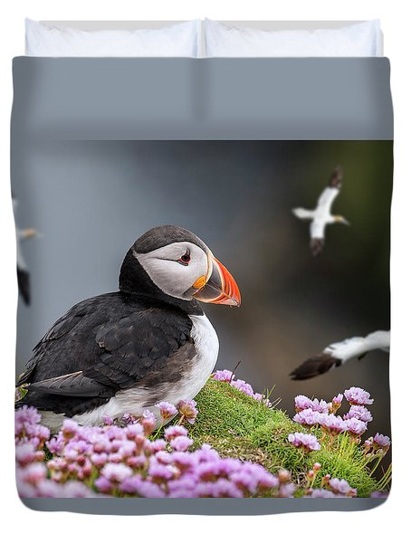 Atlantic Puffin And Soaring Gannets Duvet Cover