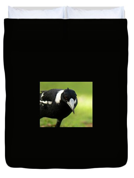 Australian Magpie Outdoors Duvet Cover