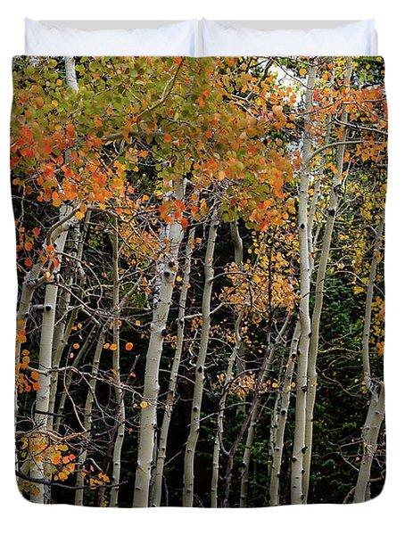 Autumn As The Seasons Change Duvet Cover