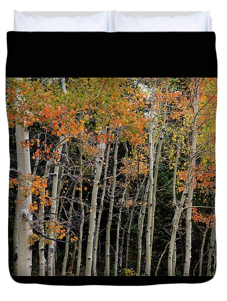 Duvet Cover featuring the photograph Autumn As The Seasons Change by James BO Insogna