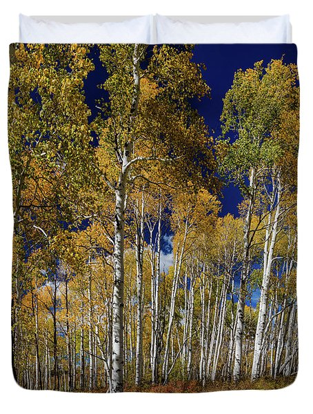 Duvet Cover featuring the photograph Autumn Blue Skies by James BO Insogna