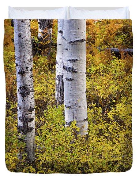 Autumn Contrasts Duvet Cover