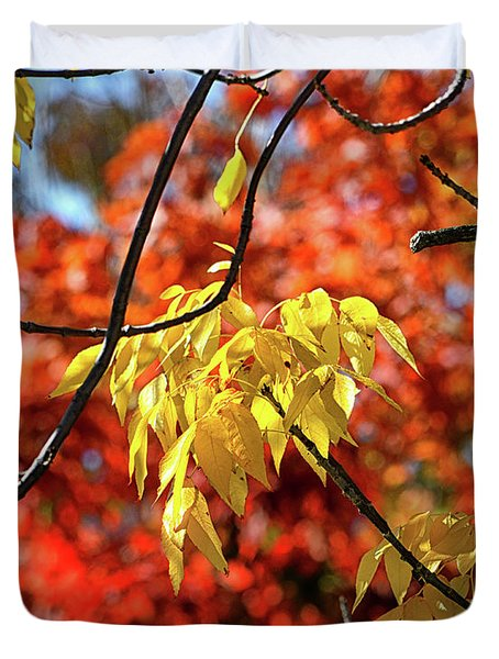 Duvet Cover featuring the photograph Autumn Foliage In Bar Harbor, Maine by Bill Swartwout Fine Art Photography