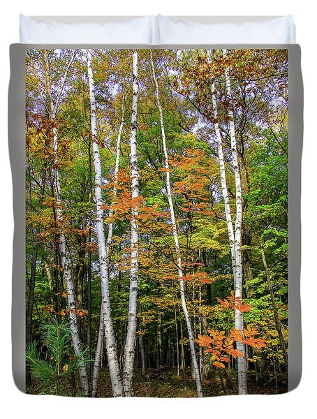 Autumn Grove, Vertical Duvet Cover