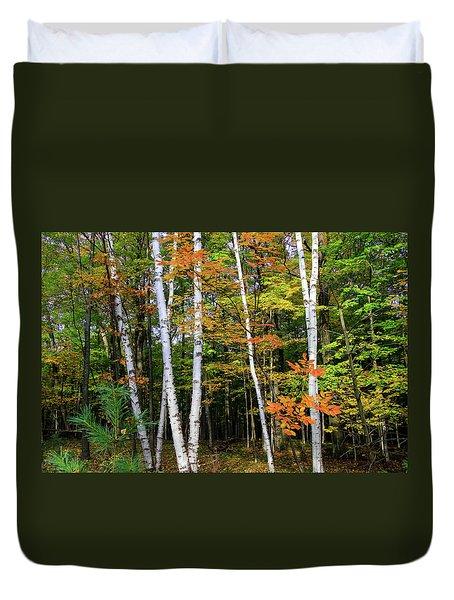 Autumn Grove, Wisconsin Duvet Cover