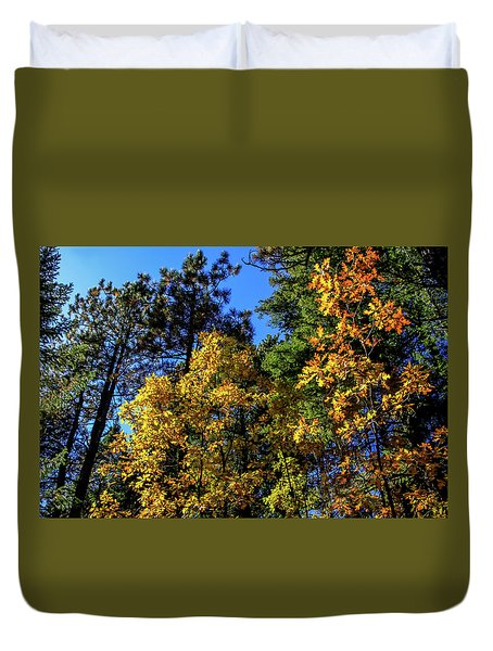 Autumn In Apache Sitgreaves National Forest, Arizona Duvet Cover