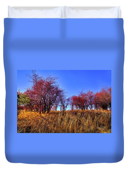 Duvet Cover featuring the photograph Autumn Sun by David Patterson