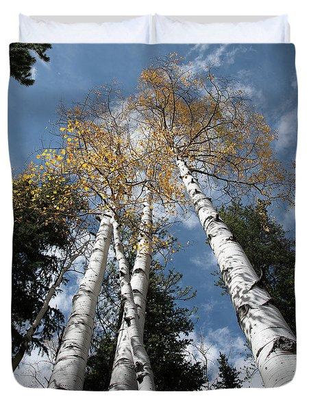 Autumnal Aspen Duvet Cover