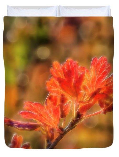 Autumn's Glow 3 Duvet Cover