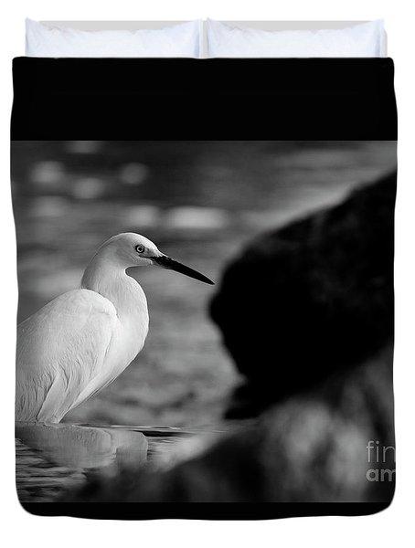 Avian Illumination Duvet Cover