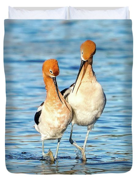 Avocet Dance Duvet Cover