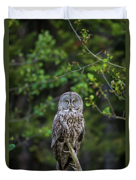 Duvet Cover featuring the photograph B16 by Joshua Able's Wildlife