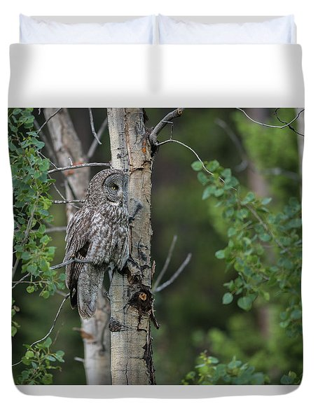 Duvet Cover featuring the photograph B18 by Joshua Able's Wildlife