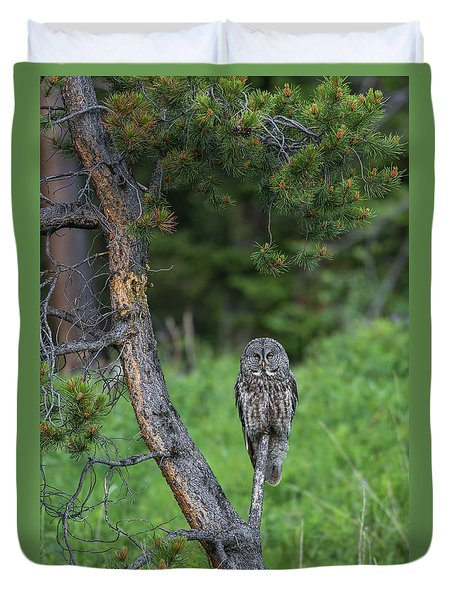 Duvet Cover featuring the photograph B20 by Joshua Able's Wildlife