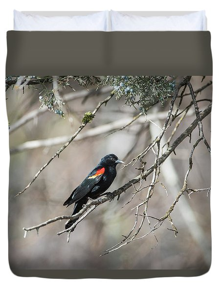 Duvet Cover featuring the photograph B26 by Joshua Able's Wildlife